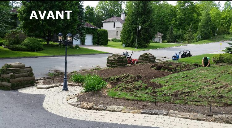 Reparation pelouse avant